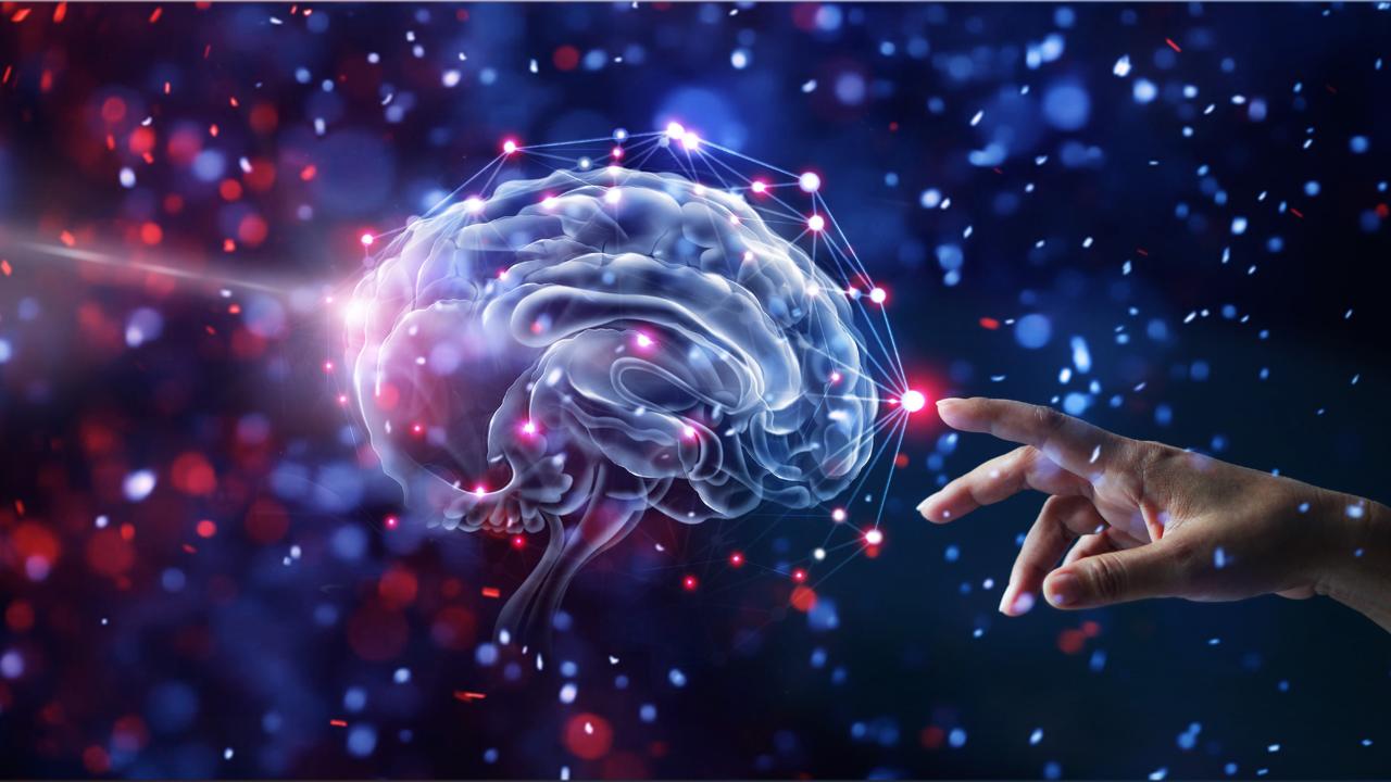 https://www.naturstoff-medizin.de/wp-content/uploads/2020/10/0266_Gehirn_Hand_Hero_1280x720px.jpg